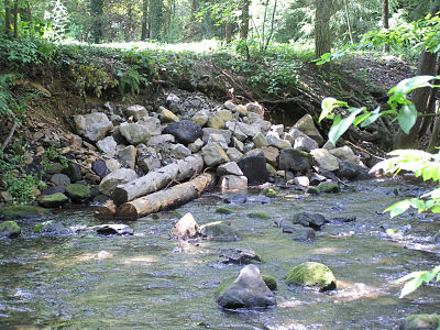 Log Vane Downstream View