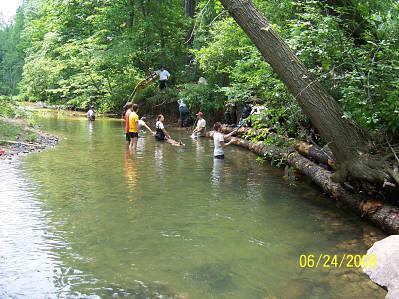 Mill Creek 4 Setting Logs