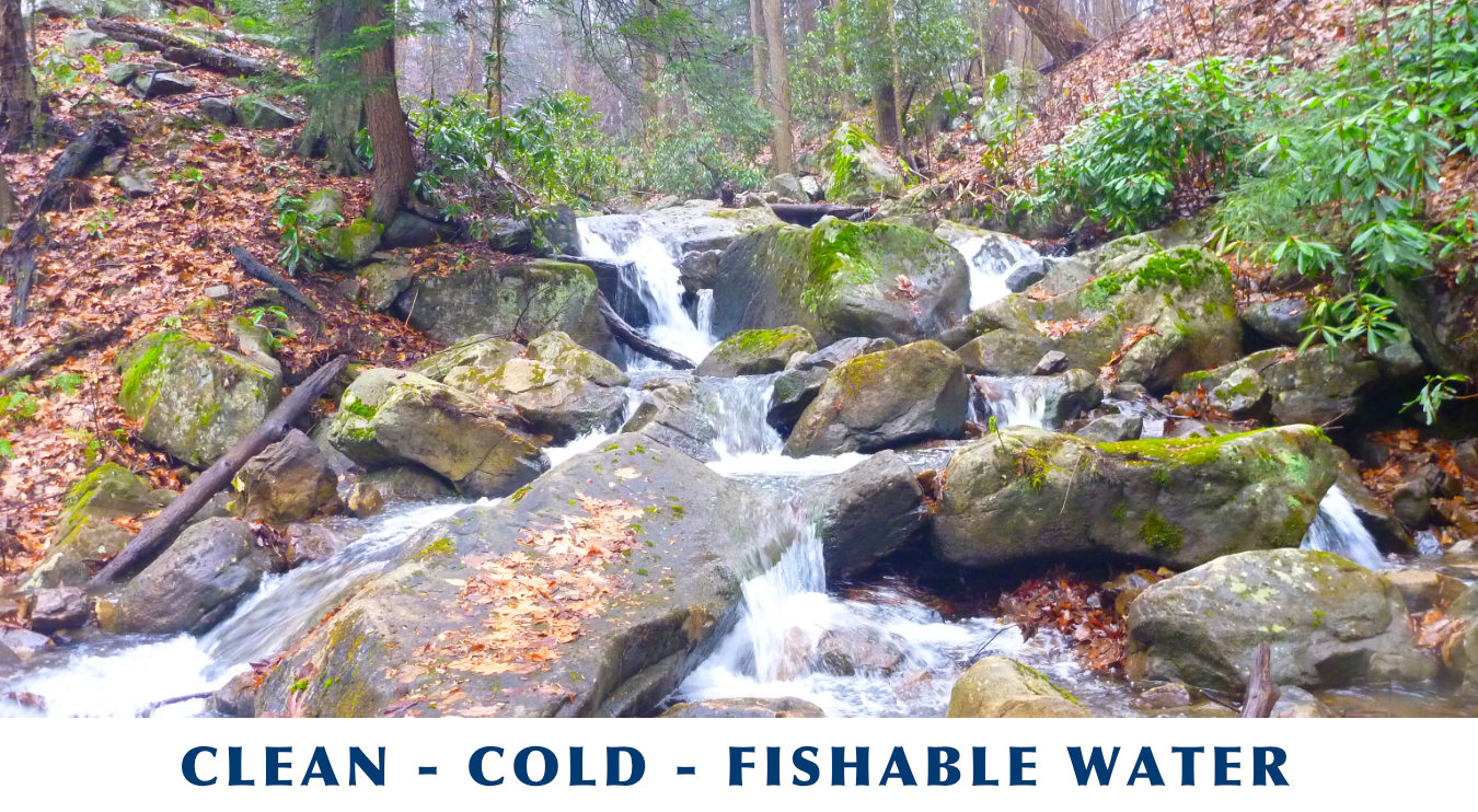 Clean, Cold, Fishable Water